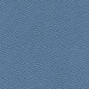 Cornflower Blue-2206
