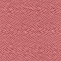 Coral Pink-2208