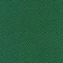 Forest Green-2221