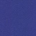 Royal Blue-2210