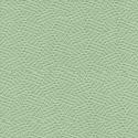 Sage Green-2207