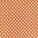 Tangerine-2708